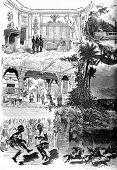 Постер, плакат: The Mysteries Of Africa The Black Venus play in five acts and twelve scenes M Ad Belot vintage e