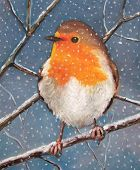 Oil Pastel Painting of English Robin
