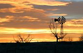 Windmill_Sunset