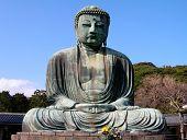 Huge Buddha Statue