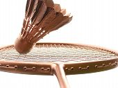 Racket And Shuttlecock