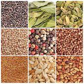 Постер, плакат: Зерно и специи