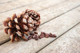 foto of pine nut  - Pine cones and scattered pine nuts on wood board selective focus - JPG