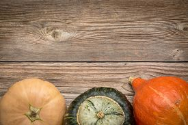 picture of buttercup  - rustic weathered wood background with winter squash  - JPG