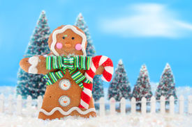 stock photo of gingerbread man  - Decorated christmas tree forest with white picket fence in snow ready for christmas with a happy gingerbread man in the front - JPG
