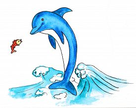 picture of swim meet  - dolphin and fish - JPG