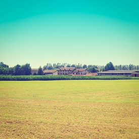 pic of farmhouse  - Farmhouses Surrounded By Fields of Young Corn Instagram Effect - JPG