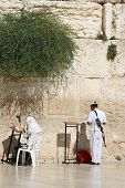 stock photo of tora  - A Men is Praying At The Wailing Wall  - JPG