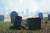 stock photo of obituary  - old cemetery in london - JPG