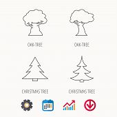 tree poster