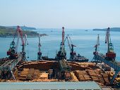 Timber Export At Vladivostok