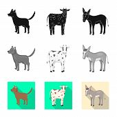 Vector Design Of Breeding And Kitchen  Icon. Set Of Breeding And Organic  Stock Vector Illustration. poster