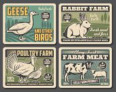 Farm Food Products, Cattle Farm Meat And Fowl Food Production. Vector Vintage Farming Butchery Poste poster