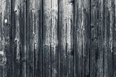Old Shabby Wooden Gray Fence. Grey Wood Surface. Dilapidated Gray Wooden Boards With Hobnail. Grunge poster