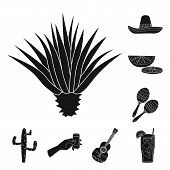 Isolated Object Of Carnival And National Logo. Collection Of Carnival And Tequila Stock Symbol For W poster