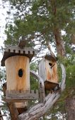 Two Birdhouses