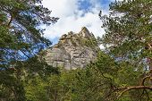 Landscape With Weathered Granite Outcrops And Trees. Burabay National Nature Park In Republic Of Kaz poster
