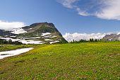 Alto Prado alpino no verão