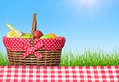 Picnic Table Covered With Checkered Tablecloth And Picnic Basket poster
