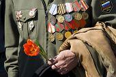 Hand Of Veteran With Tulip