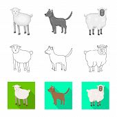 Vector Design Of Breeding And Kitchen  Icon. Set Of Breeding And Organic  Stock Symbol For Web. poster