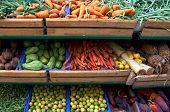 Various Kinds Of Vegetables On Supermarket Stalls