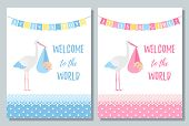 Baby Shower Card. Vector. Baby Boy, Girl Design. Cute Pink, Blue Banner With Newborn Kid, Stork, Fla poster