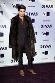 LOS ANGELES - DEC 16:  Adam Lambert arriving at the VH1 Divas Concert 2012 at Shrine Auditorium on D