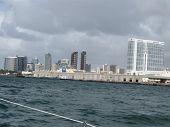 Sailing In San Diego, Ca