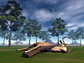 stock photo of corpses  - Rifle pose on the corpse of a dead buck in nature by morning light - JPG