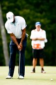 NORTON, MA-AUG 31: Golfer Tiger Woods (left) putts the fifth green as caddie Joe LaCava watches during the second round at the Deutsche Bank Championship on August 31, 2013 in Norton, Massachusetts.