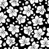 Seamless pattern with orchid flowers. Vector illustration.