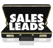 Sales Leads Briefcase Sell Customers Proposal Presentation