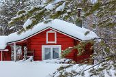Red wooden finnish house in the forest.