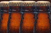 Closeup of four wet beer bottles with selective focus. The bottles only show the necks and caps and are covered with condensation.