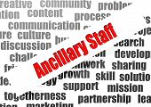 Ancillary Staff Word Cloud