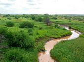 Landscape Nature. Meandering River. Trees Around. Africa, Kenya.