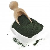 Spirulina powder - algae, nutritional supplement in spoon scoop isolated on white background