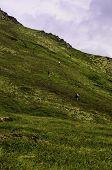 Adventous hikers