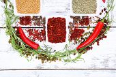 Spice with herbs and dried chilly pepper on wooden background