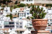 Andalusian White Villages In Spain