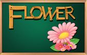 Illustration of a blackboard with a flower