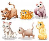 Illustration of the playful cats on a white background