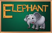Illustration of a blackboard with an elephant