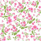 Pink flower on white background. Seamless pattern. Raster version.