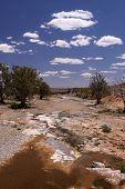 Outback Landscape. Australia