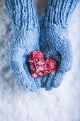 Woman hands in light blue knitted mittens are holding a beautiful glossy red heart in a snow background. Love and St. Valentine concept.