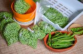 Peas Packing