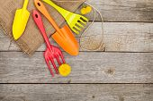 Garden tools with flower on wooden table background with copy space
