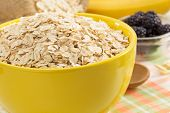 bowl of oat flake on tablecloth background